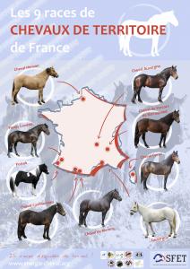 Carte chevaux de territoire - petit format