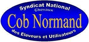 Cob normand nouveau