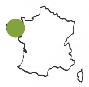 SFET Breton