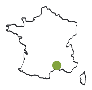 SFET Camargue