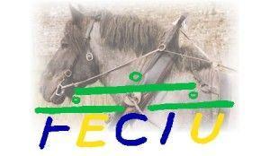 logo_FECTU