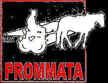 pROMMATA