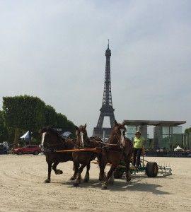Hersage Paris Eiffel Jumping 2015