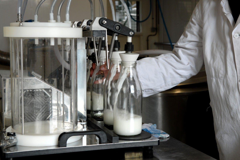 © JL - Dugast - Mise en bouteilles du lait de jument - Chevalait