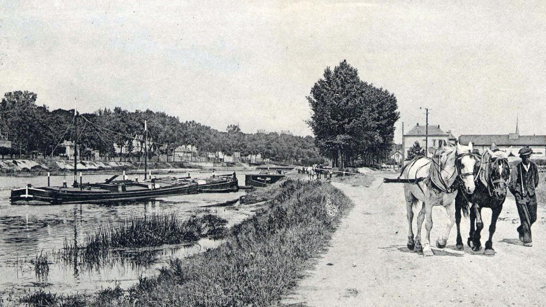 Le mât de halage (en principe utilisé en rivière), fortement haubané, mesure de 2 m à 2,50 m. Il est généralement situé entre le tiers avant et le centre géométrique du bateau.