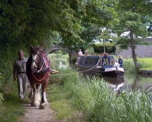 © Mike Fascione - Sur la partie médiane du canal de Montgomery à l'est du Pays de Galle, les croisières en horseboat proposées aux touristes remportent un franc succès