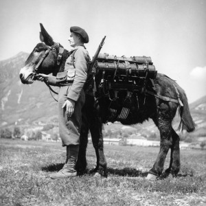 Collection E. Rousseaux - 2eme RAM 1942