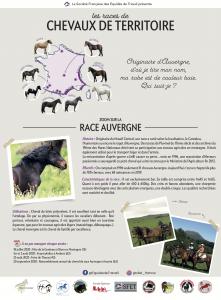 Découverte Auvergne Energie Cheval