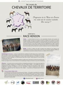 Découverte Henson Energie Cheval